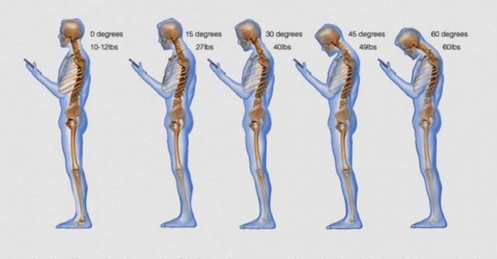 neck weight