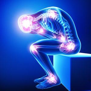 chiropractor ottawa